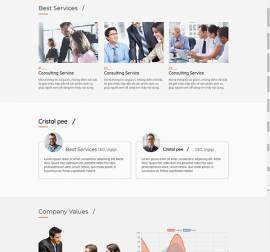 Mẫu website Landing Page 09