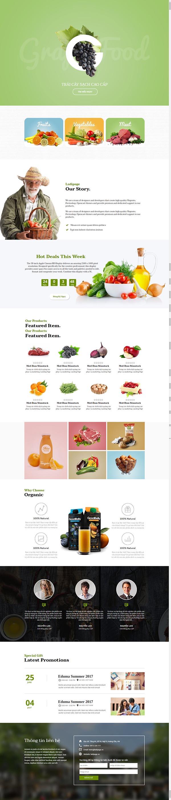 Thiết kế Mẫu website Landing Page 13