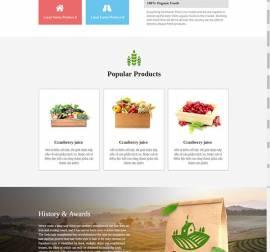 Mẫu website Landing Page 14